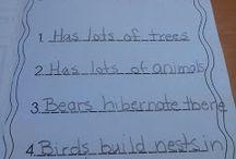Animals and Habitats / Animal habitats