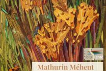 Mathurin Méheut (1882-1958), observateur de la nature