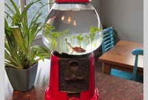 Cool Idea To Do With A Fish Bowl