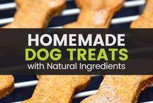 Dog recipes and health