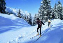 Fiera Alta Quota - Turismo / Un'area espositiva sarà interamente dedicata alla proposta turistica di località alpine italiane ed estere che promuoveranno le proprie offerte della stagione invernale 2014/2015 a migliaia di appassionati.