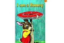 Books I Loved When I Was a Kid