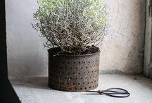 květníky / flower pots