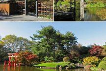 Jardim Botânico do Brooklyn