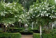 Formal Garden Designs / Formal layouts for the garden