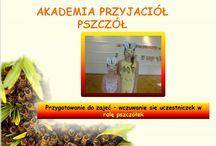 Miejski i gminny Ośrodek Kultury Łochów Akademie Przyjaciół Pszczół