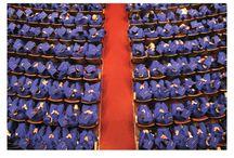 Graduation Congratulations Cards / graduation cards, congratulations, humorous, funny