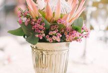 Protea centre piece / Flowers