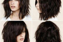 shorthair with bangs