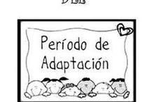 Periodo de adapracion