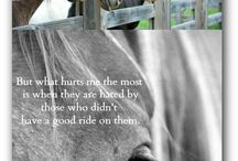Horses and Cowgirl lifestyle
