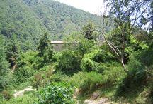 Itinerario Torrente Assi / Escursionismo, torrentismo, ambiente, natura