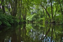 Osterau - Bramau / Die Osterau bietet dem Paddler als Kleinfluss durch Wald- und Wiesenlandschaft eine überraschende Vielfalt an Naturerlebnismöglichkeiten. Sie vereinigt sich in Bad Bramstedt mit der Hudau zur Bramau, die uns direkt zur Stör führt und damit eine Verbindung zur Elbe darstellt.
