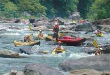 Summer Gauley / One of the best whitewater rivers in the world seen at a whole new level!  / by ACE Adventure Resort