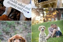 Photo ideas for occasions