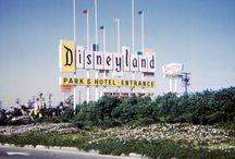 DISNEY / ✨The Magical World Of Disney ✨