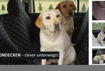 Autoschondecken / Fährt der Hund im Auto mit, bieten tierlando Autoschondecken intelligenten und pflegeleichten Schutz vor Schmutz im Rückbankbereich. So nutzt der Hund einen ideal einen geschonten Platz im Fahrzeug-Innenraum.