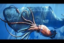 Top 10 Unearthly Creatures of the Deep