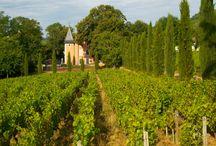 Château de la Crée / Visite du vignoble et des chais au Château de la Crée en Bourgogne Réservez avec winetourbooking.com