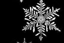 Snowflakes !!