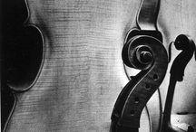 Instrumental / by Janelle Peterson