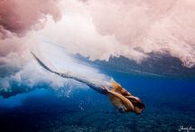 Anna Banks: Of Poseidon  | konyvkoktel.blogspot.hu