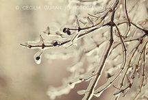 foto / Love it