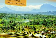 Indonésie / Země koření a tisíce ostrovů...