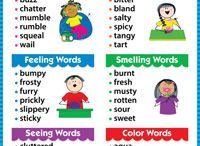 Vocabulary five senses