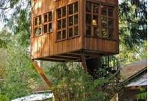 redwood treehouses / by Kathie Fargo