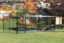 KENNEL CASTLE / For larger breeds of dogs we have the K9 Kennel Castle dog house. This will hold the largest breeds of dogs. Such as Mastiff's (as you see here) Great Dane's, Saint Bernard's, German Shepherds as well as many others.