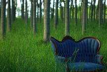 Chairs / by Tina Cunio