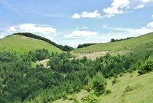 Pirineo navarro, Valle del Roncal