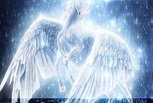 Pegasus (not unicorns;)