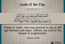 Ayah OF The Day / Daily ayahs / by QuranReading.com