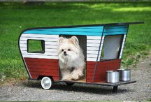 Cool Pet Homes / Cool cat and dog houses.