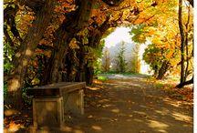 Autumn in Flower Garden in Kroměříž / Květná zahrada v Kroměříži je pěkná v každém ročním období. Zvláště pak  na podzim.