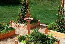 garden goodness / Ideas for my garden/yard. / by Laurie Farnes