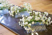 Wedding's ideas