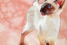 Siamese/cats/animals