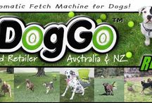 GoDogGo Fetch Machine Ball Thrower for Dogs available in the UK & EUR / by GoDogGo Fetch Machine Automatic Ball Thrower for Dogs