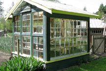 Greenhouses / Etc.