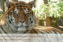 Rescue centers and sanctuaries