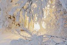 Jeg elsker vinteren