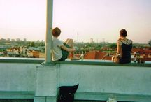 roofpark