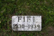 pet cemeteries.
