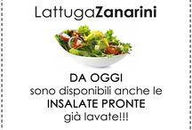 Novità e Promozioni / Azienda Agricola Zanarini Luciano via Belvedere di sotto, 15 41057 Spilamberto (Modena)