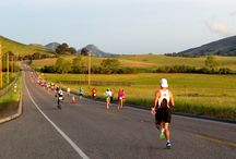 San Luis Obispo Marathon / The San Luis Obispo Marathon + Half Marathon takes place in late April each year. / by Race SLO