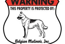Belgian Malinois Signs and Pictures / Warning and Caution Belgian Malinois Signs. https://www.signswithanattitude.com/belgian-malinois-signs.html