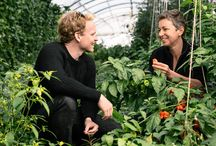 Les producteurs locaux / Les producteurs locaux qui approvisionnent Le Chef